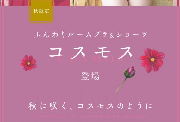秋限定-ふんわりルームブラ-ショーツ-コスモス-シーオーメディカル<公式>
